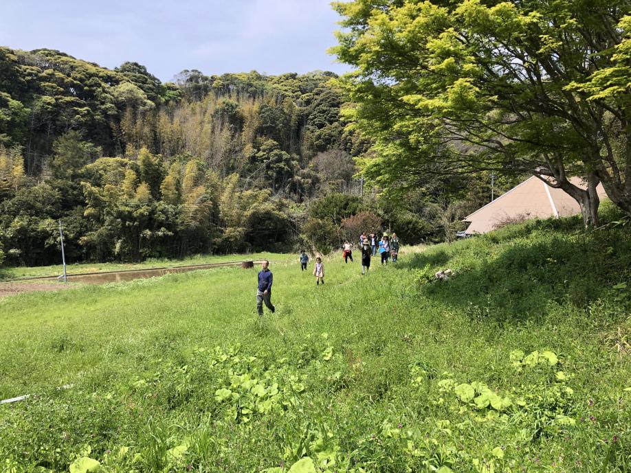 新緑の中を歩く写真